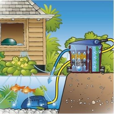 Oxyg ner votre bassin for Pompe bassin poisson exterieur